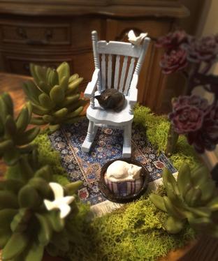 In Memoriam Fairy Garden